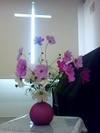 Flower071028