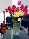 Flower080504