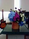 Flower080824