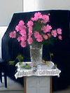 Flower061022