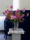 Flower061029