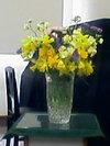 Flower070429