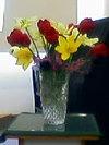 Flower070520