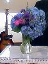 Flower070708